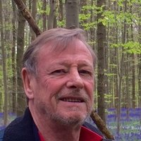 Native english businessman teaches all levels of english and french in Brussels.