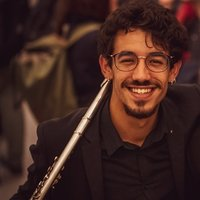 Professional flutist offers lessons of flute and piccolo in Belgium live and online